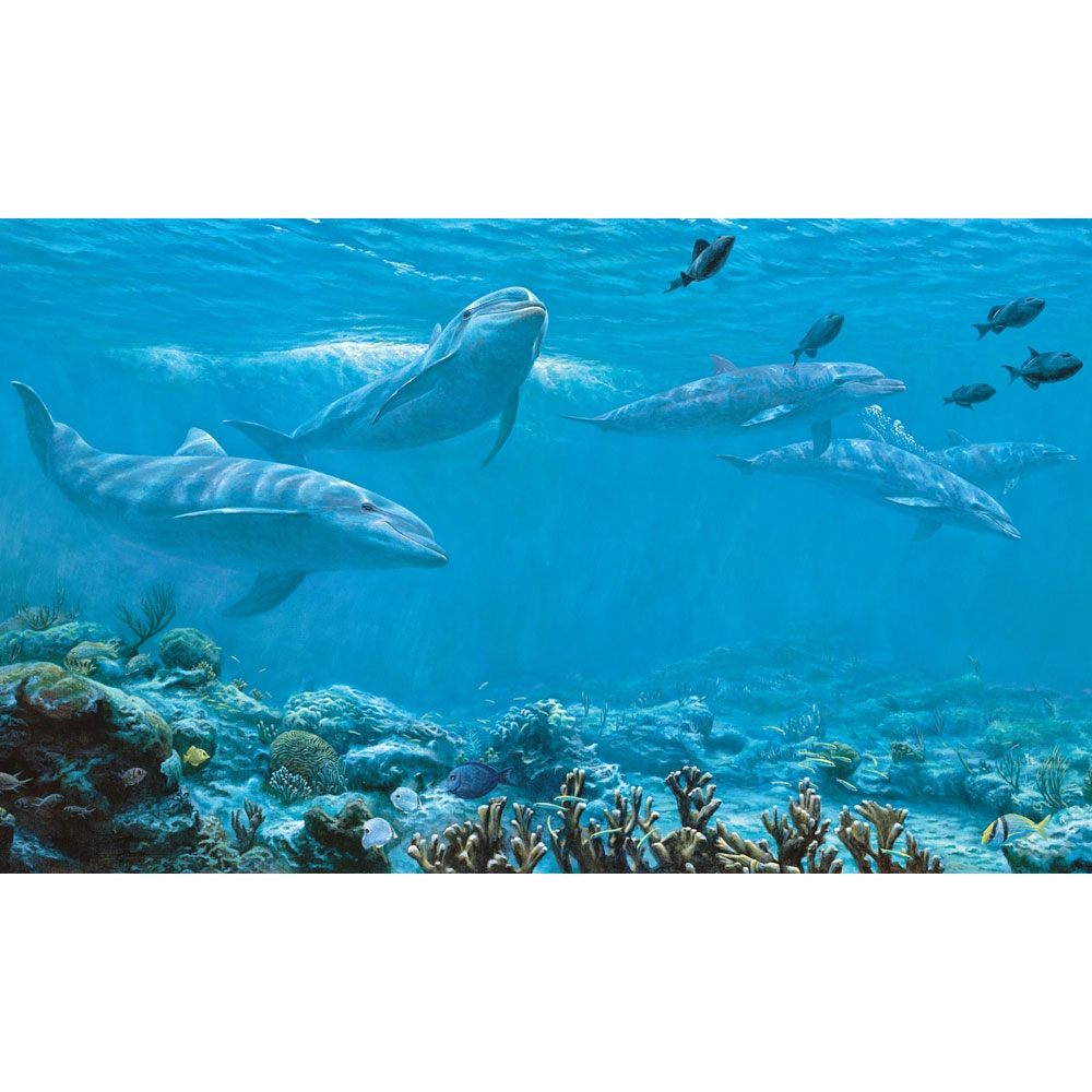 Oceans and surfing for Dolphin mural wallpaper