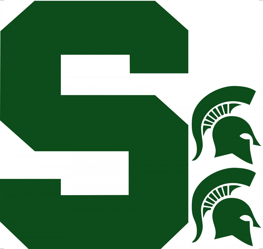 Ncaa Michigan State Spartans Wall Accent 3 Large Msu
