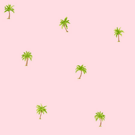 56 sq ft Palm Tree Wallpaper